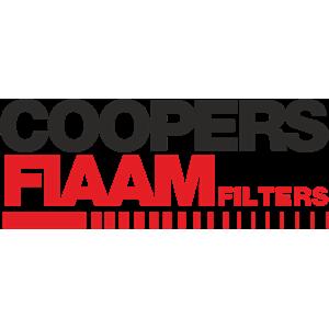 Air Filter Oe Fiaam PA7507