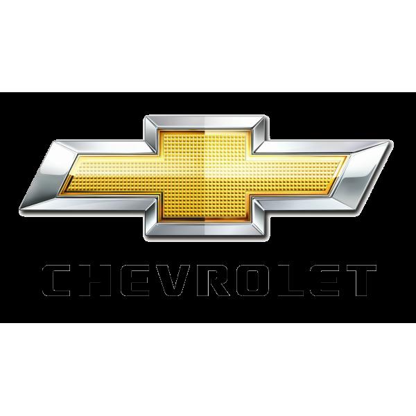 Actuator Chevrolet 42541905