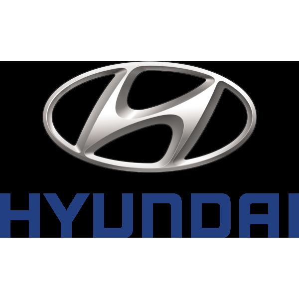 Activated Carbon Filter, tank breather Hyundai/kia 3142022000