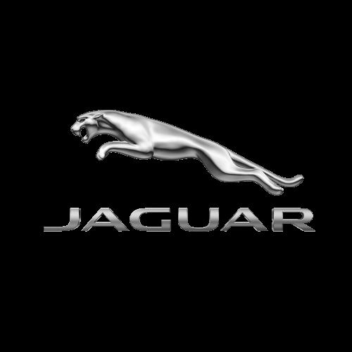 Bearing Bush, Stabiliser Jaguar C2S51264004